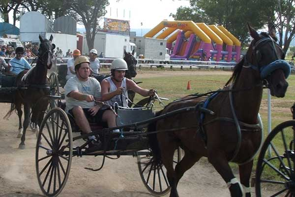 Several horse buggies racing around dirt track