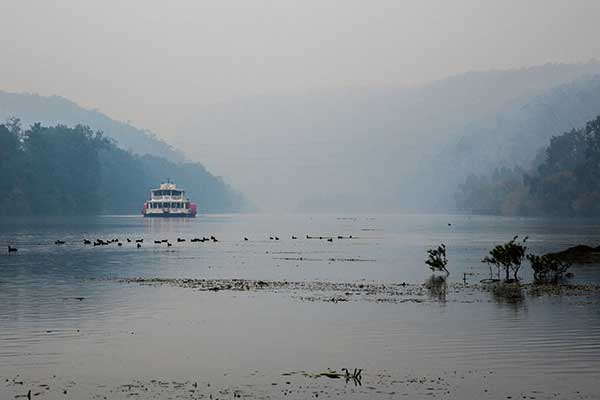Nepean Belle on the Nepean River in mist